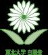 東北大学 白菊会