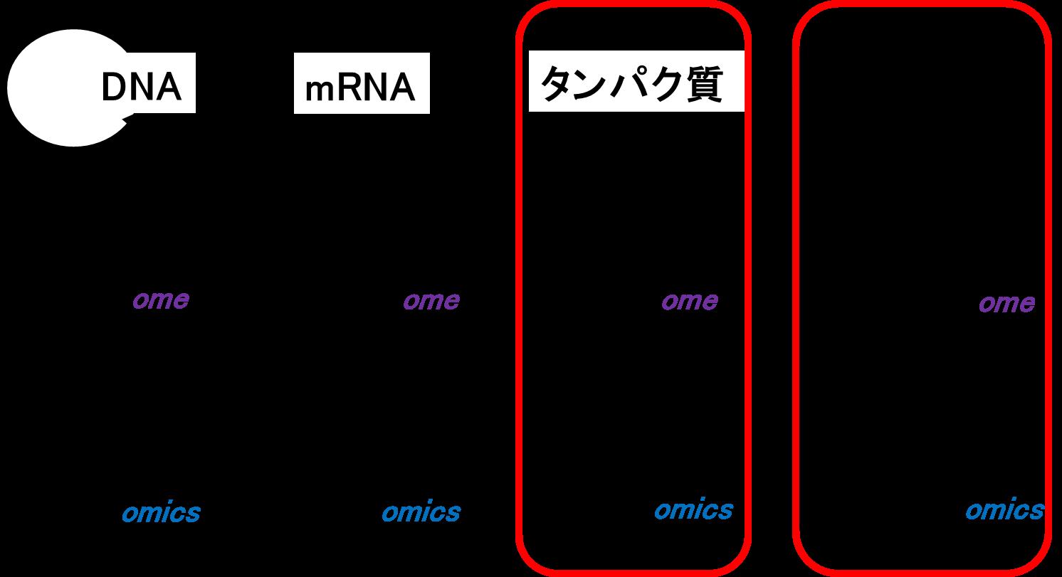 Fujimura_PNG