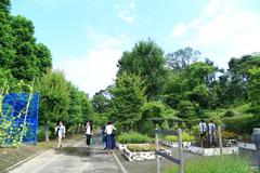 薬用植物園見学